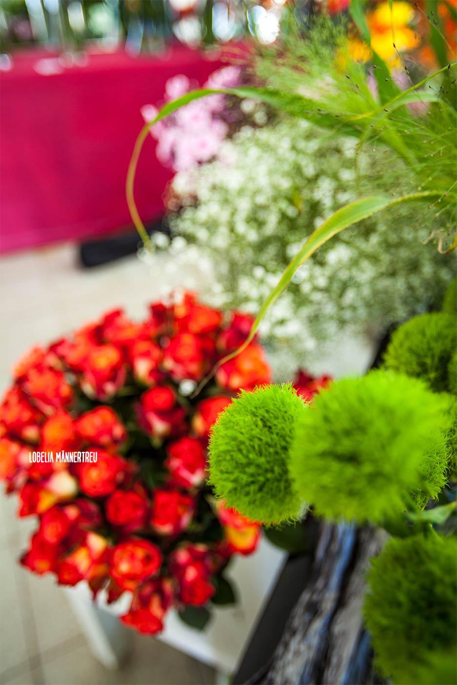 LOBELIA Maennertreu Ihr Blumenfachgeschaeft in Hohen Neuendorf